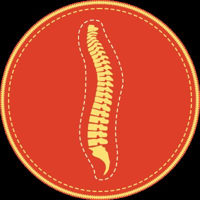 Pre-Chiropractic